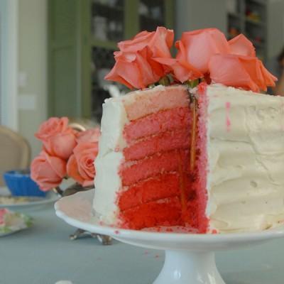 Cake and Karaoke