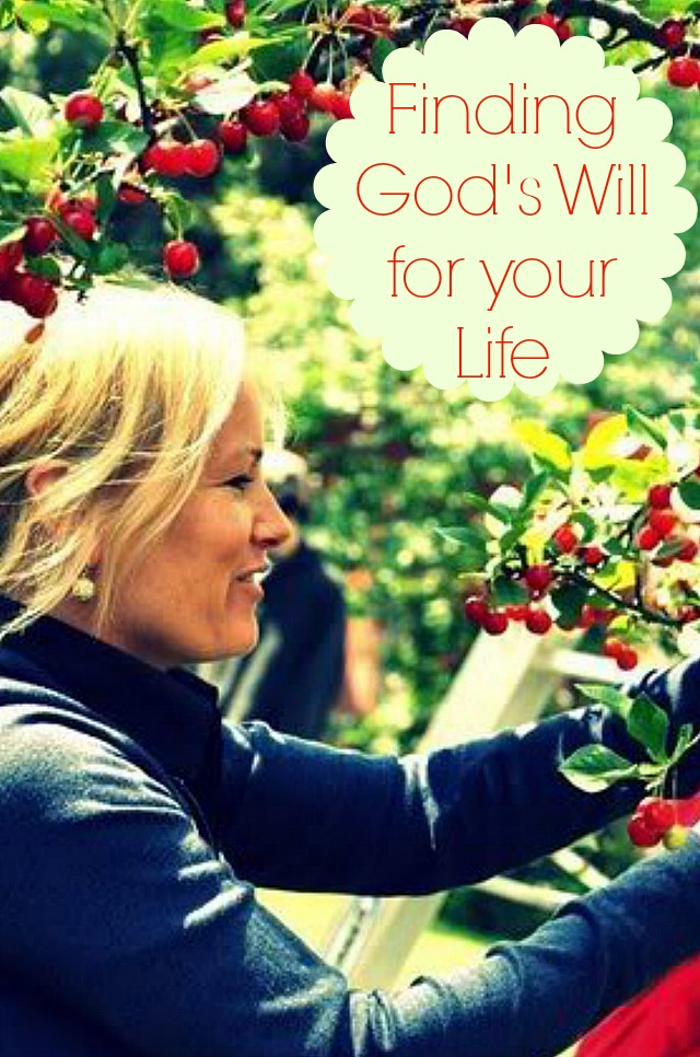 How to Find God's Will for Your Life
