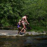 creekwading